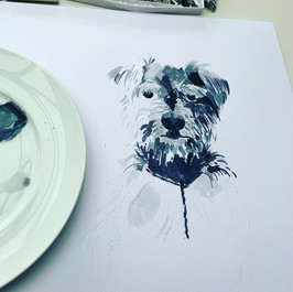 Puppy Portrait in Progress