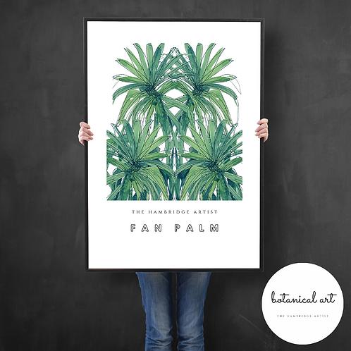 Classic Fan Palm Botanical Art Print