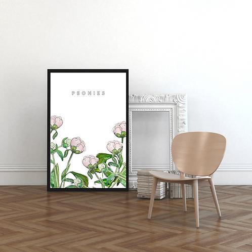 Peonies on White Botanical Art Print
