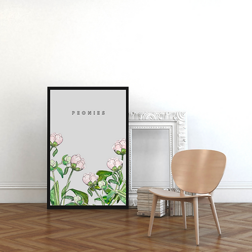 Peonies on Pale Grey Botanical Art Print