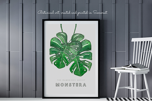 Two Monstera Leaves Botanical Art Print