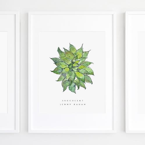 Succulent by Jenny Kahan