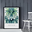 Thumbnail: Fan Palm (January 2021) Botanical Art Print