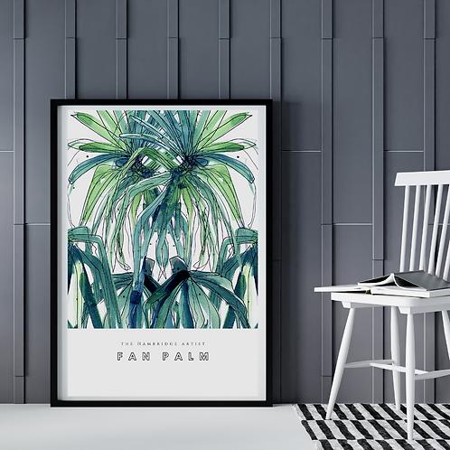Fan Palm (January 2021) Botanical Art Print