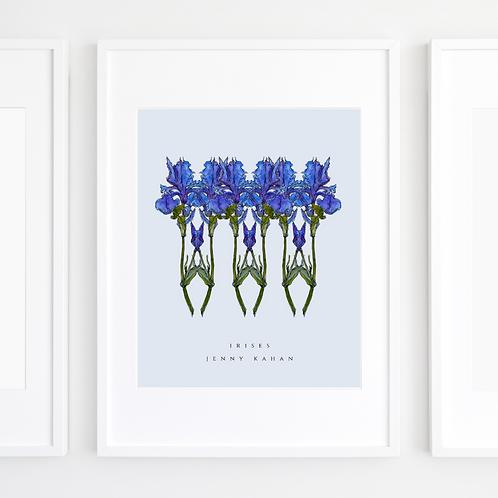 Irises by Jenny Kahan