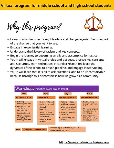 Virtual Social Justice camp pg2_v3.png