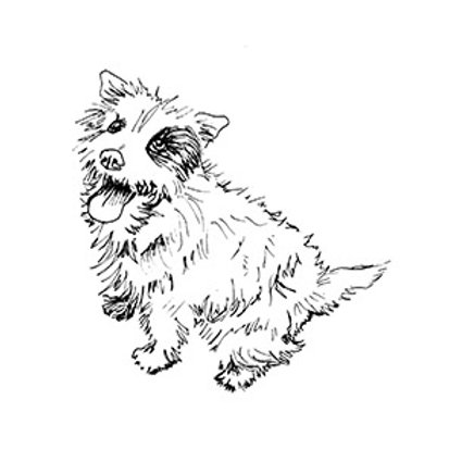 Spot Terrier Freehand Machine Embroidery Kit