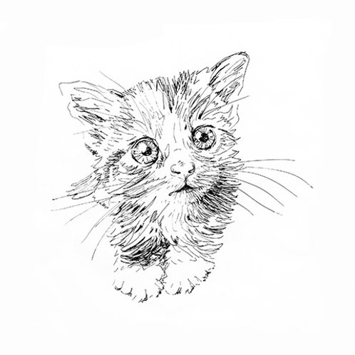 Cute Kitten Freehand Machine Embroidery Kit