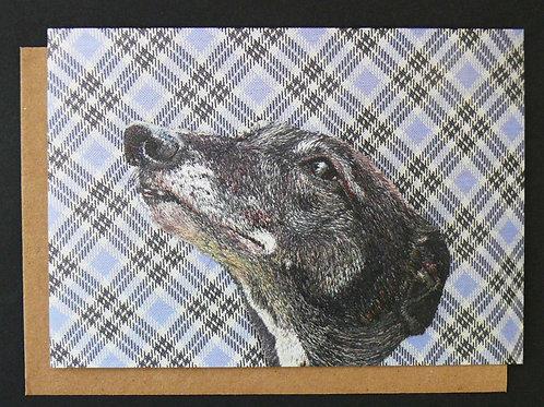 Millie Greetings Card