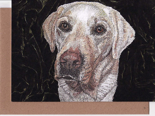 Bailey Greetings Card