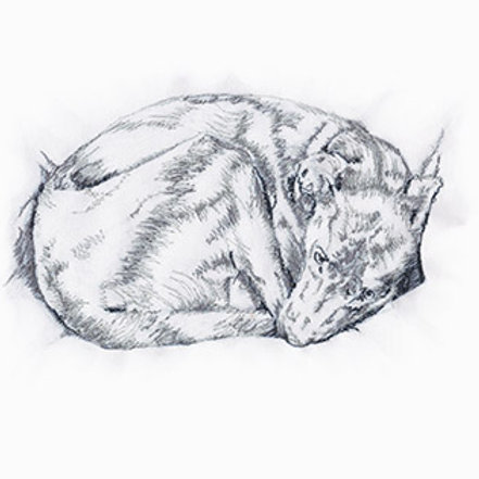 Curled Up Dog Freehand Machine Embroidery Kit