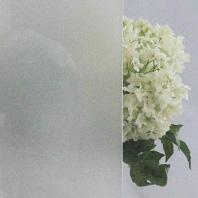②すりガラス画像
