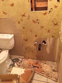 bathroom demo before