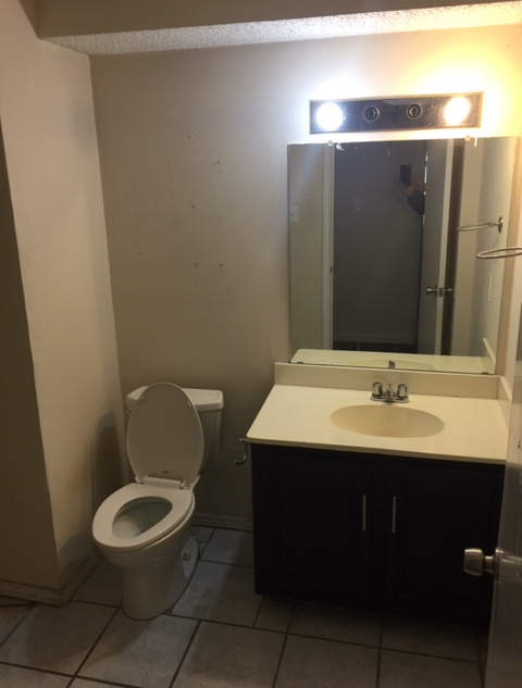 bathroom-remodel-dated-prior-damage (3).