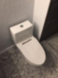 updated toilet