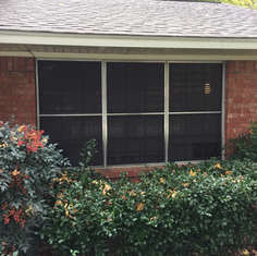 window treatments 17