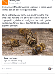Bees, not just for the old