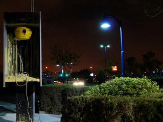 Bumblebee street artist