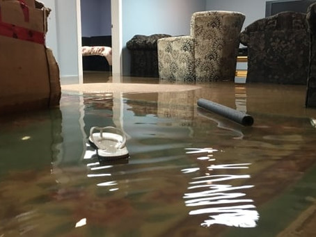 Do You Know What To Do When You Have A Flooded Basement?