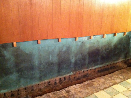 Why You Should Repair A Wet Basement