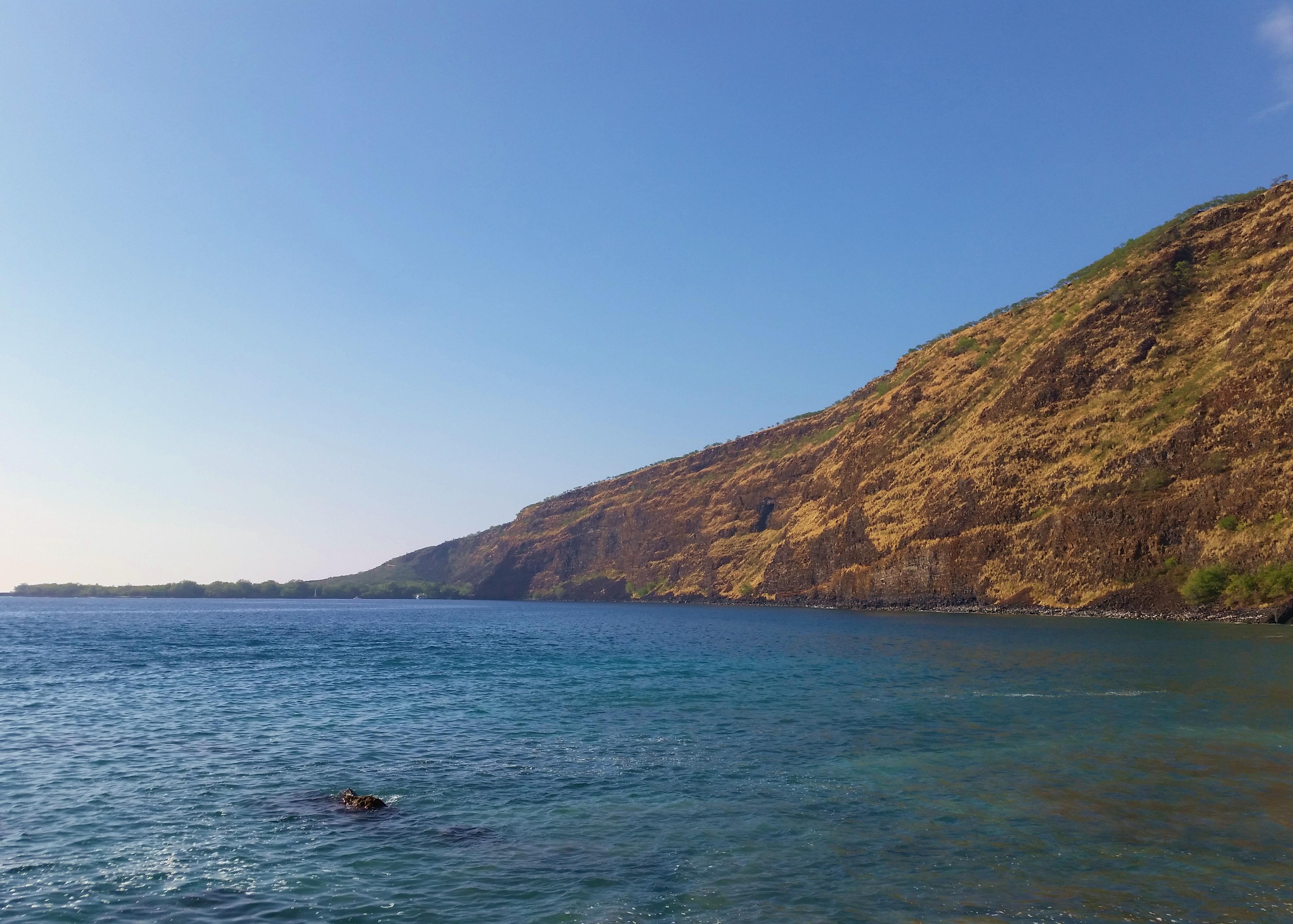Kealakekua_Bay_–_Captain_Cook_volcano_mountain_retreat_b&b_big_island_hawaii