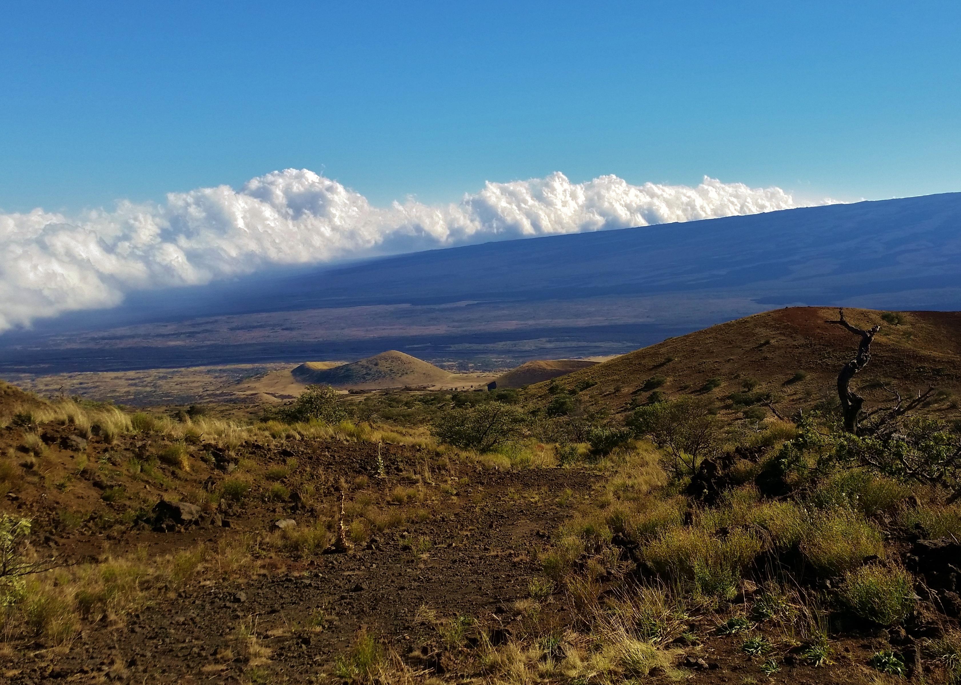 Saddle and Mauna Loa volcano mountain retreat b&b big island hawaii