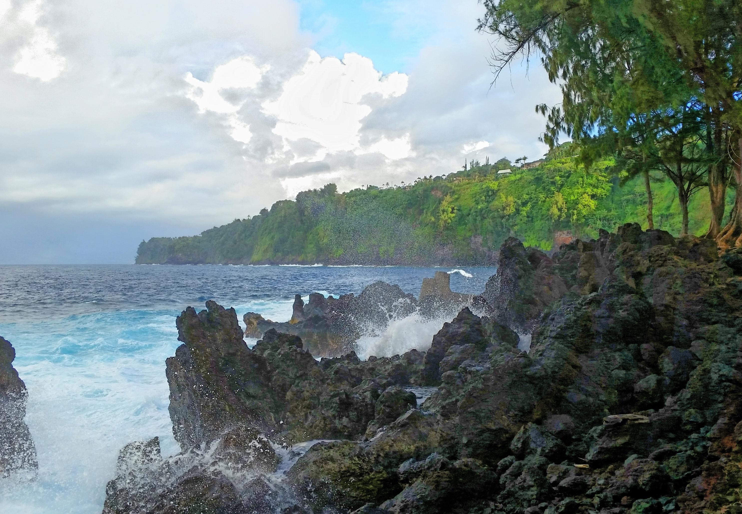 Laupahoehoe volcano mountain retreat b&b big island hawaii