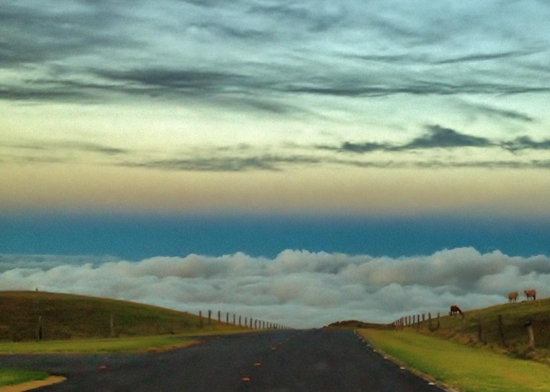 Saddle Road volcano mountain retreat b&b big island hawaii