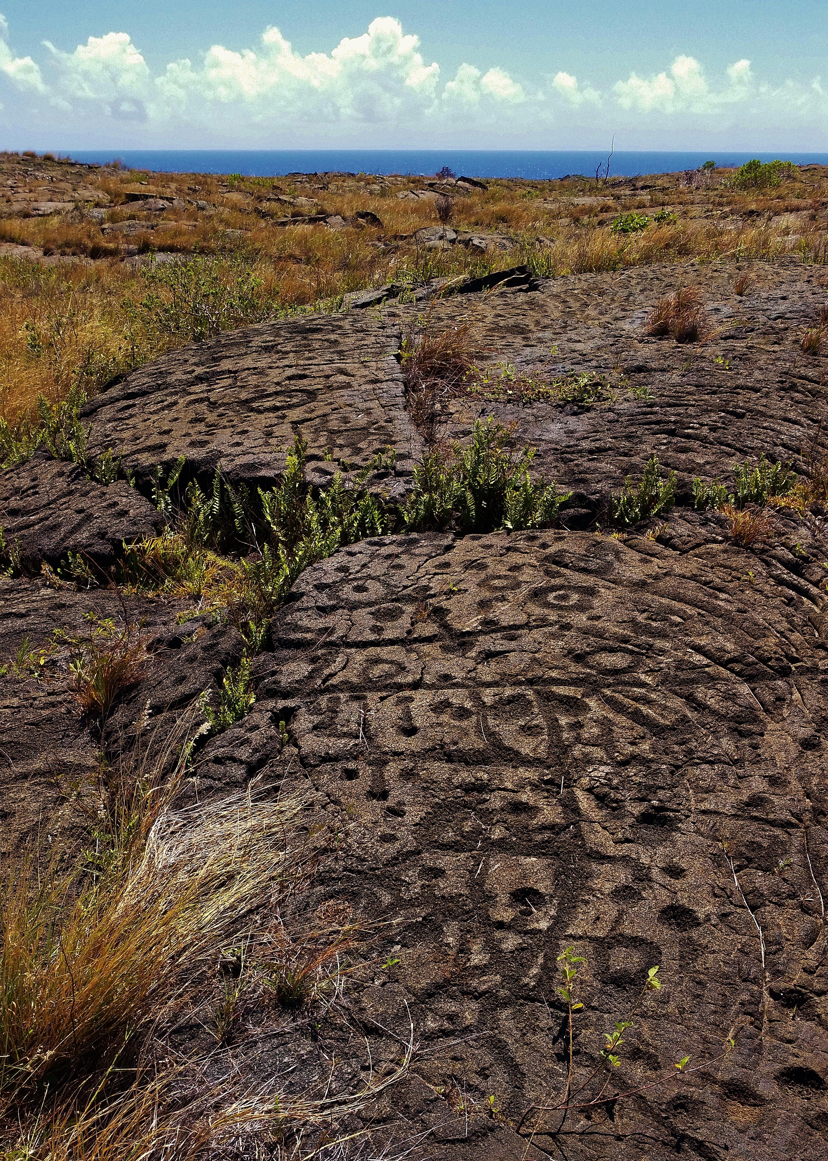 Pu'u Loa Petroglyphs volcano mountain retreat b&b big island hawaii