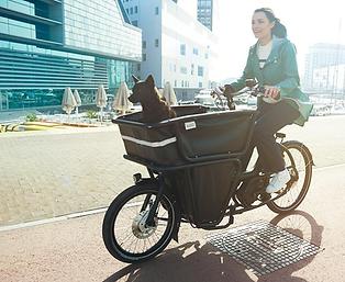 vélo electrique 77