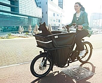 vélo électrique cargo a louer