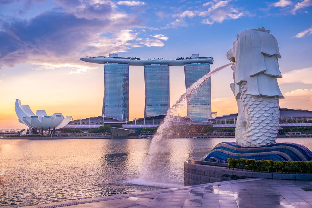 order-hang-singapore-ve-viet-nam