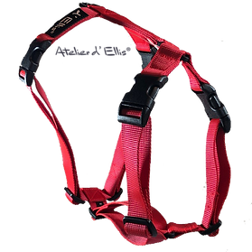 Harness red M.png