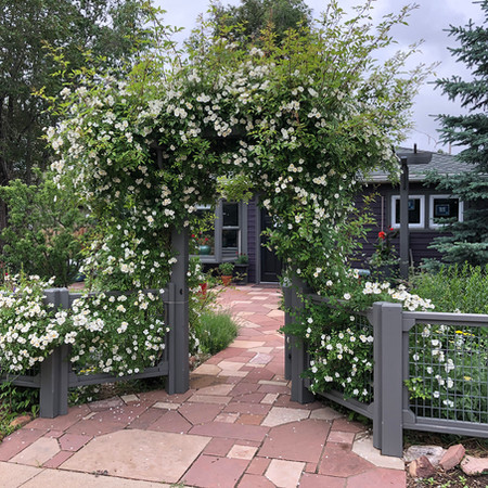 Pathway and arbor