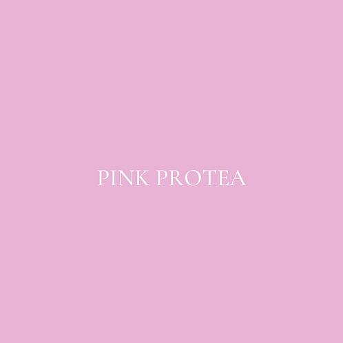 PINK PROTEA FLOWER BOX