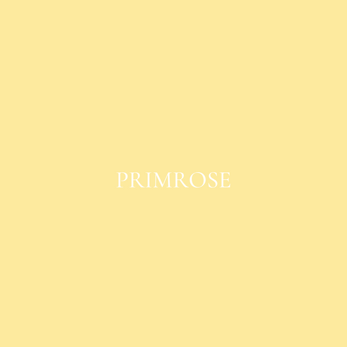 PRIMROSE FLOWER BOX