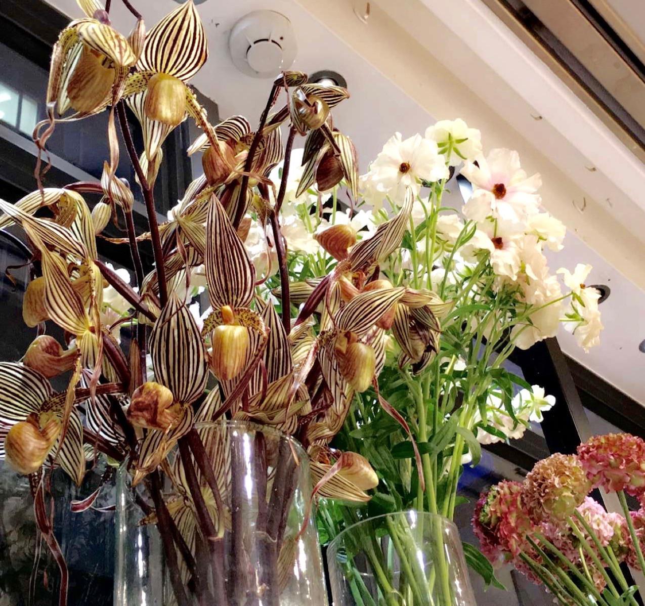 Nicolai Bergmann Flowers