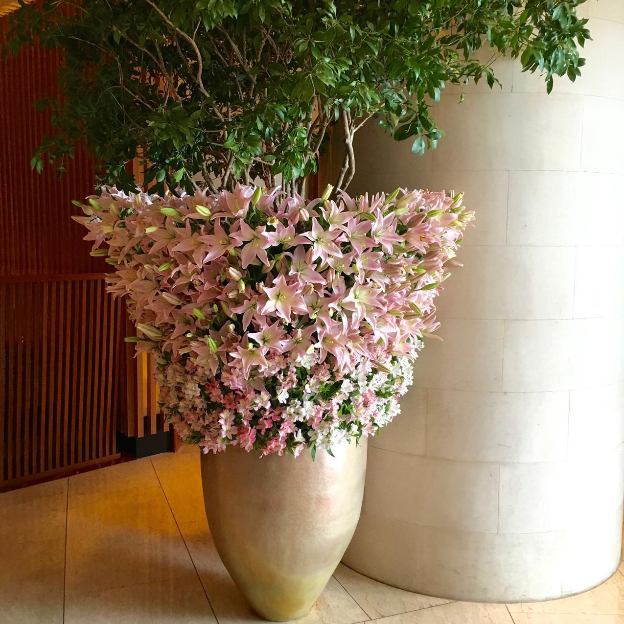 The Peninsula Flowers