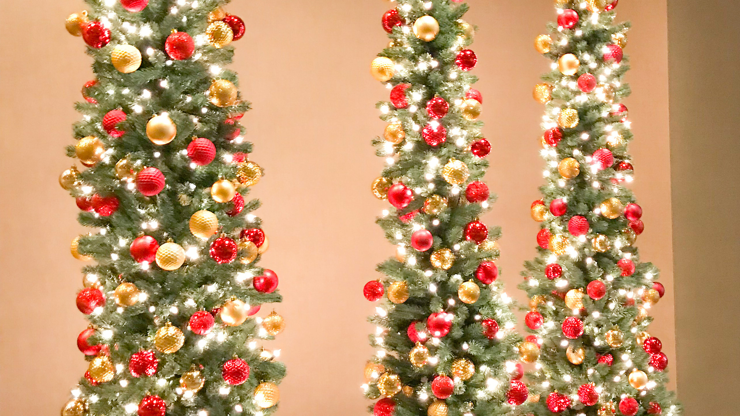 Trio of skinny Festive Christmas trees designed by Franzie's Flower Design for the Fairmont Dallas hotel, located near the ballrooms.