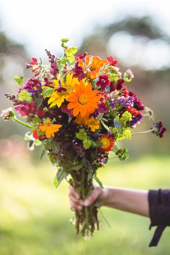 Yssys flowers-62.jpg