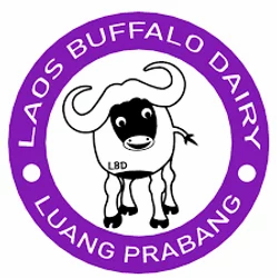 The Laos Buffalo Dairy: Sustainability in action