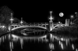 Moonlight Torrens