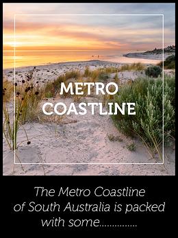 Metro Coastline Blog Icon.png