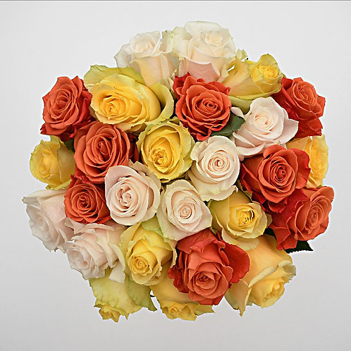 Rising Sun™ Roses Bunchies ™ by 1800Gifters ®