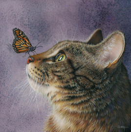 painting of a cat gazing at a butterfly perched on its little kittle nose