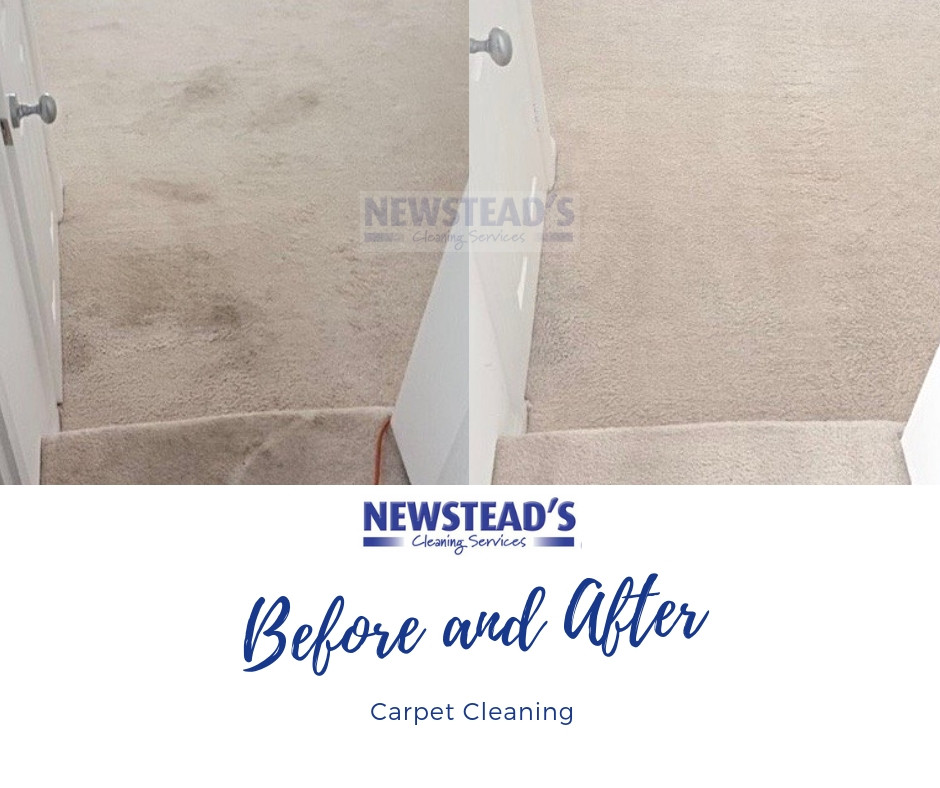 Carpet Cleaning | Newsteads Cleaning Services | North London