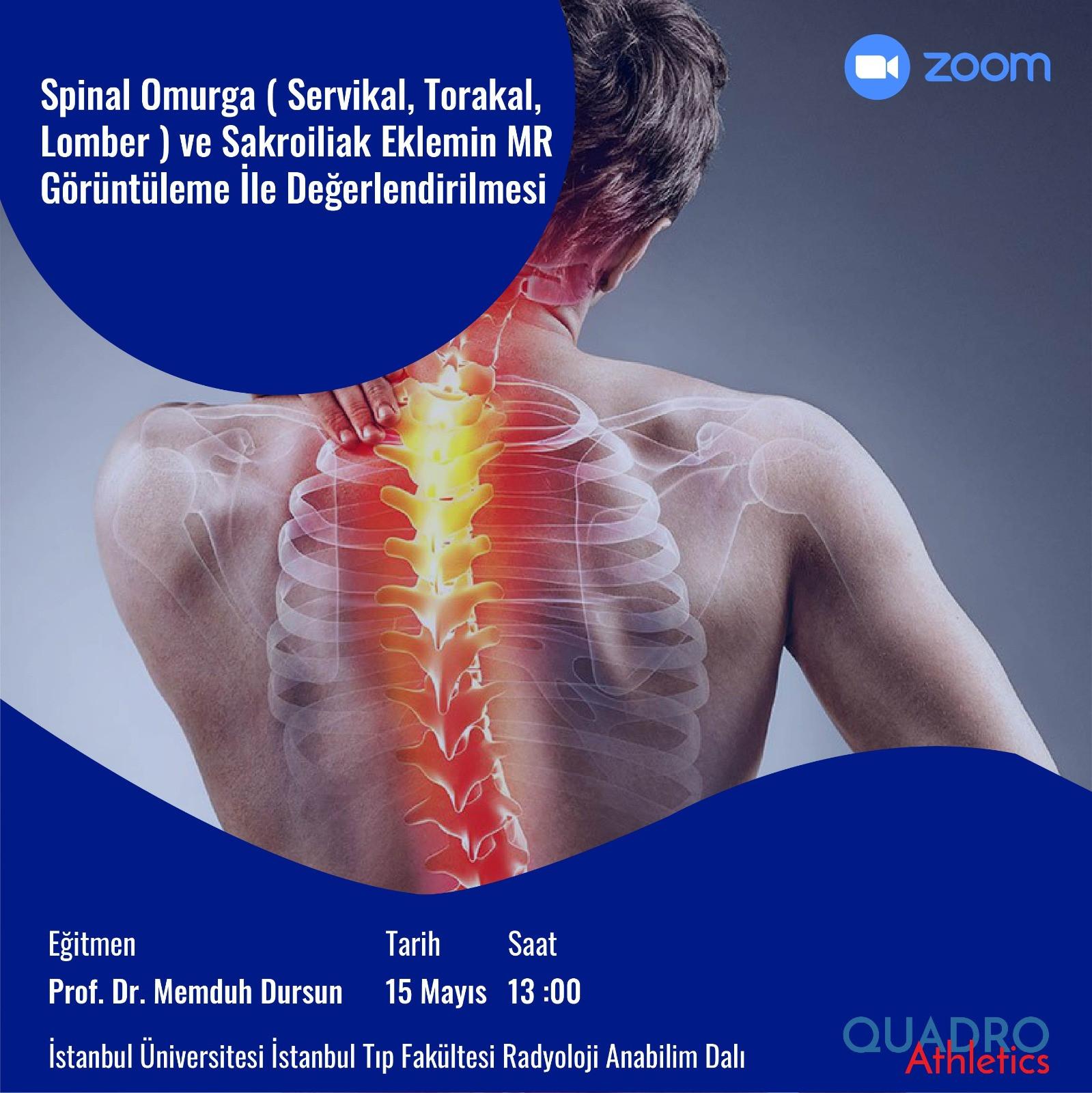 Spinal Omurga ( Servikal Torakal, Lomber