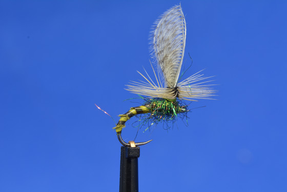 New favourite emerger