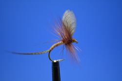 Wally Wing Mayfly.JPG