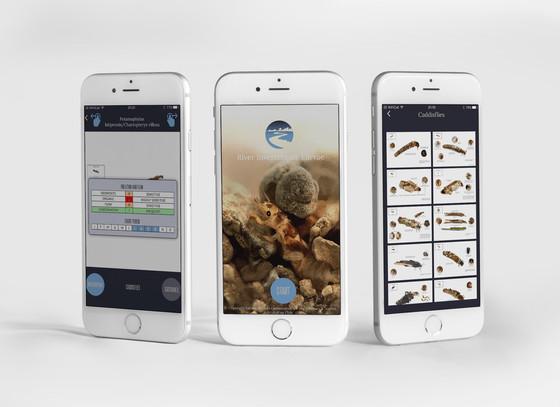 The River Invertebrate App